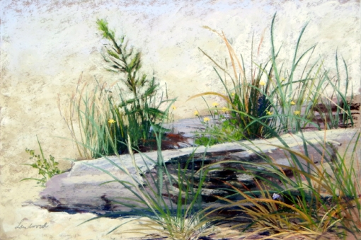 "12""x18"" pastel plein air painting of log, beach grass and wildflowers, painted during Cannon Beach Plein Air & More 2015"