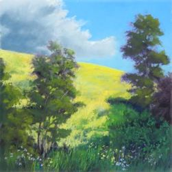 "12""x12"" plein air pastel painting of canola fields, cumulous clouds, trees, wildflowers in Banks, Oregon"