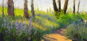 "6""x12"" pastel plein air painting of lupine, trees, shadows across trail in the woods, painted near Timberland Creek"