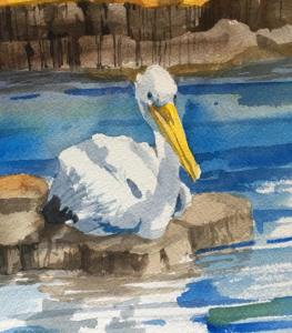 While Pelican near The Dalles, Oregon