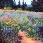 Path Through Lavender