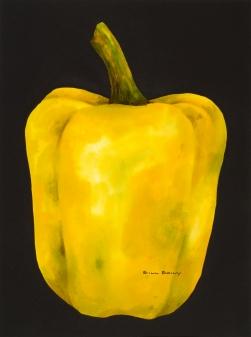 Yellow Pepperwatercolor