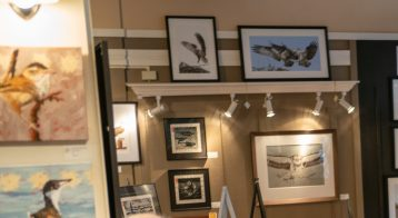 Art by Carol Cassidy, Debby Neely, Robin Skinner, Molly Reeves and Neal Maine.