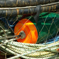 Crab pot with buoy