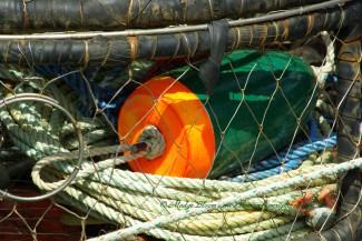 Crab pot with buoy